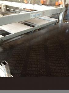 China Poplar Core 12mm 15mm 18mm Brown Black Film Faced Plywood on sale