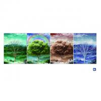 3d Flip Lenticular Printing Poster With 12x17 Inches Four Season Tree