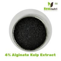 China 10% Potassium 4% Alginate Kelp Extract Powder on sale