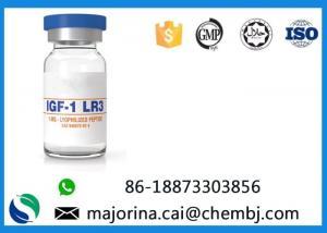 China IGF-1 LR3 Pharmaceutical Polypeptide for Bodubuilding CAS:946870-92-4 on sale