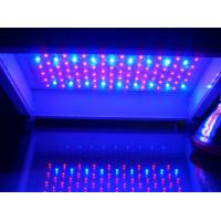 China 100w NEW led grow light on sale
