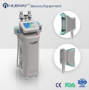 China Christmas Promoting rf cavitation cryolipolysis antifreeze slimming fat freeze machine on sale