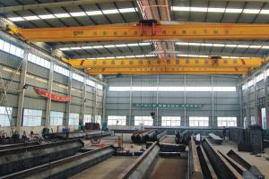 China Yuantai Quality guaranteed LDP Low Headroom Single Girder Overhead Crane on sale