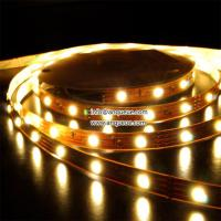 IP68 SMD5050 60 leds/M Flexible RGB LED light Strip