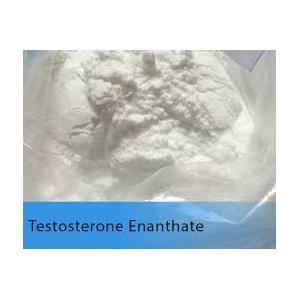 Poudre blanche de l'essai E d'Enanthate de testostérone de stéroïde anabolisant de testostérone
