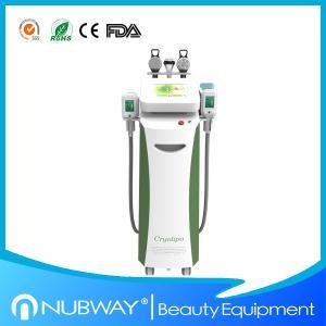 China Most advanced cellulite technology cryolipolysis freezing fat slimming machine on sale