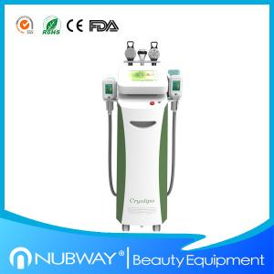 China Most advanced cellulite technology cryolipolysis freezing fat slimming machine on sale
