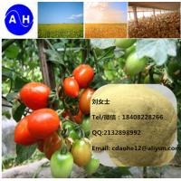 China 2018 New Product Chelate Micronutrients  Amino Acid Chelated B+Ca+Mg Agro Fertilizer on sale