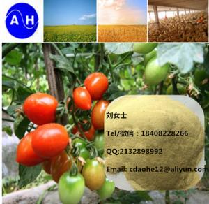 China 2018 New Product Chelate Micronutrients  Amino Acid Chelated B+Ca+Mg Agro Fertilizer supplier
