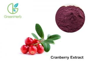 China Cranberry Standardized Extract 25% Anthocyanins , Cranberry Juice Extract on sale