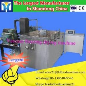 China plantain pineapple slicing machine vegetables and fruits commercial drying equipment on sale