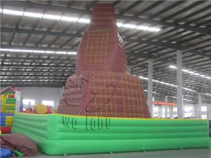 China inflatable kids climbing wall,children inflatable rock climbing wall,giant inflatable climb wall on sale