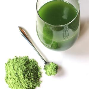 China NEW JAS NOP USDA Organic Wheat Grass Powder  Manufacturer sale on sale