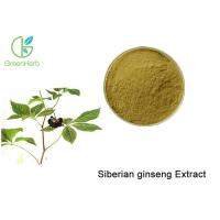 China Brown Powder Natural Plant Extracts / Siberian Ginseng Root Extract Anti - Fatigue on sale