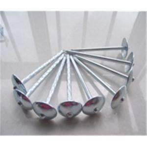 Quality ногти толя с зонтиком возглавляют ногти толя зонтика for sale