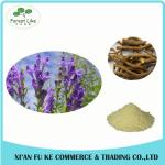China Cosmetic Raw Material Scutellaria Baicalensis Root Extract Baicalin wholesale
