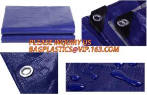 China HDPE Woven Fabric Tarpaulin, LDPE Laminated PE Tarpaulin, Finished,Tarpaulin Roll,Ready made  PE Tarpaulin, BAGEASE, PAC on sale