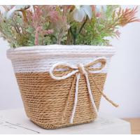 China Fashional Flower Potted plants, indoor plant flower stand in competitivre price,Support low MOQ on sale