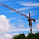 56m Boom Length China Crane Companies Qtz63 Tower Crane for Sale