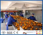 Обрабатывающее оборудование фруктового сока с цитрусом/Тангеринес/машиной экстрактора апельсинового сока