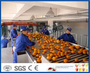 China Fruit Juice Processing Equipment With Citrus / Tangerines / Orange Juice Extractor Machine on sale
