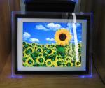 ビデオ/音声/写真は 15 インチ LED ライトが付いているデジタル写真フレームを個人化しました