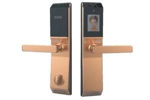 China Palm Face Recognition Door Lock System IC Card Password Supply FC CE Approved on sale
