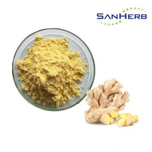 China Herbal Extract Natural Ginger Root Extract Powder Food Grade Anti Oxidant on sale