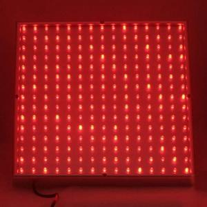 China Red / White / Yellow  LED Plant Growing Lights 120w / 300 watt / 90w with low energy on sale