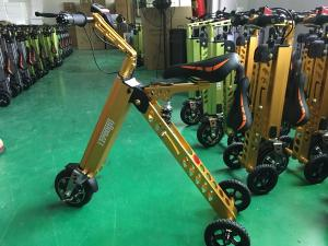 China Industrial Three Wheel Electric Scooters For Children Motorcycle Zappy Scooter on sale