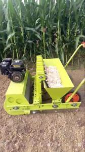 2017 Hot Garlic Seeder Garlic Planter Machine For Sale Seeder