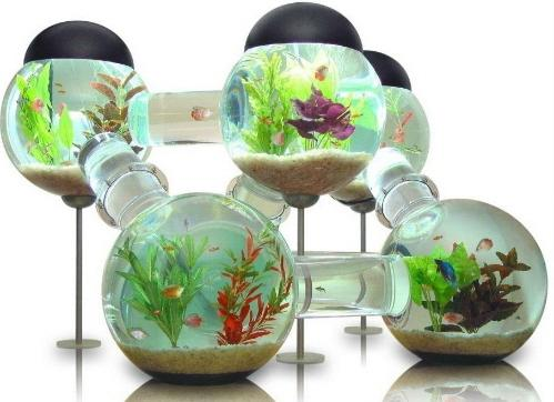 WALL HANGING MOUNTED FISH TANK - BETTA BUBBLE AQUARIUM Images