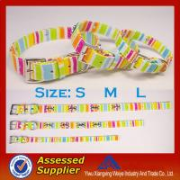 Promotional item chromatic stripe dog collars and leashes with hight quality