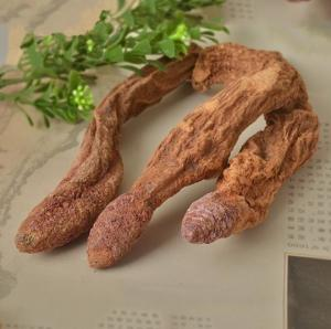 China China xinjiang Wild dried caulis songaria cynomorium herb Suo Yang whole plant traditional sex herb for men on sale