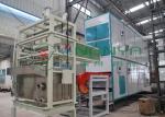 Energy-saving Auto Paper Egg Tray / Egg Carton Machinery with 700Pcs / H