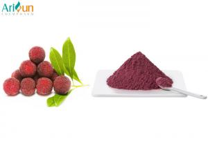 China Sweet Freeze Dried Fruit Juice Powder Red Color Freeze Dried Waxberry Powder on sale