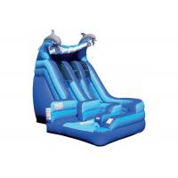 Anti - Skid Kids Inflatable Jumping Castle , Blue Giant Inflatable Playground