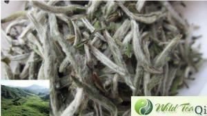 China Silver Needle Premium on sale