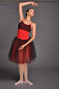 China Adult Stage Performance Ballet Dance Tutu Skirt on sale