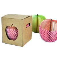 Recycled red / pink apple Shaped Sticky Notes for girl student
