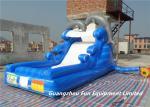 Tobogán acuático inflable para los niños, vendedor entero del delfín inflable del tobogán acuático inflable