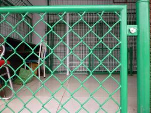 China Chain link wire mesh manufacture  Price of fence   chain link fence factory on sale