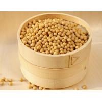 98%Soy Lecithin,Soy Lecithin Extract,Soy Lecithin Powder,Soy Extract CAS No.:8002-43-5