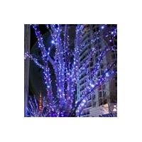 12v LED Christmas Light