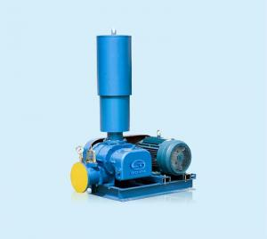 China DSR Chinese Manufacturer Roots Blowers for Water treatment aeration on sale