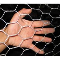 China High Strength Hexagonal Stainless Steel Chicken Wire Mesh Chicken Wire Roll on sale