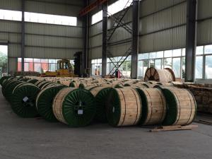 Quality Bare Aluminium Conductor Steel Reinforced ACSR Cable With High Voltage for sale