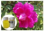 Reducing Dark SpotsNatural Cosmetic Ingredients Rosehip Oil Skin Care Oil Liquid