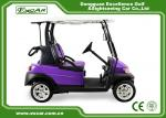 Purple And Black 2 Passenger Electric Car 48V With 1 Year Warranty
