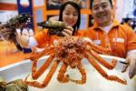 23ro International de China (Guangzhou) Fishery& Mariscos Expo2015